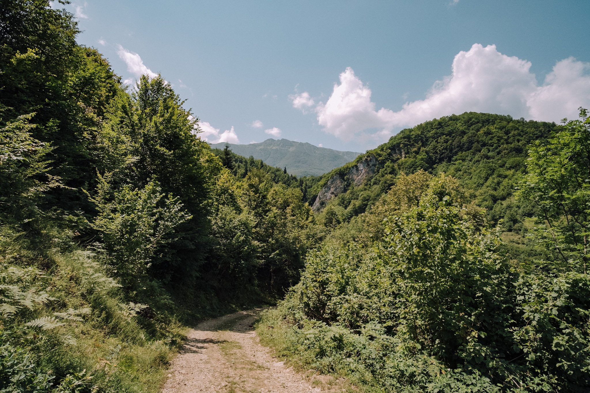 Paradise trail in Dimitri Mais' father's village of Tskhmori is a wide, well-worn path that cuts through the mountainside