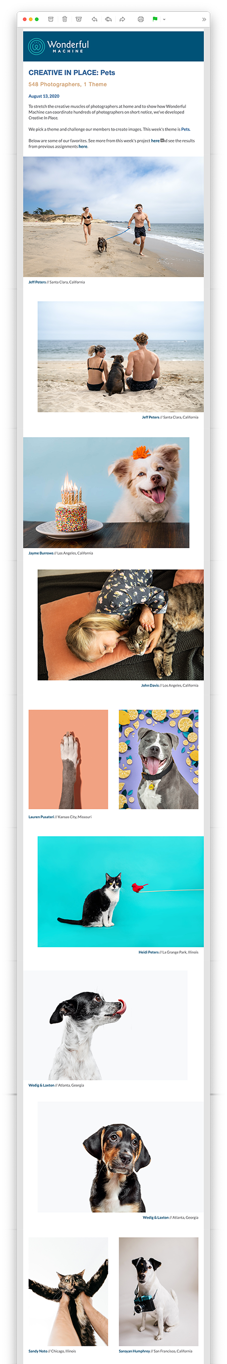 Creative In Place Pets
