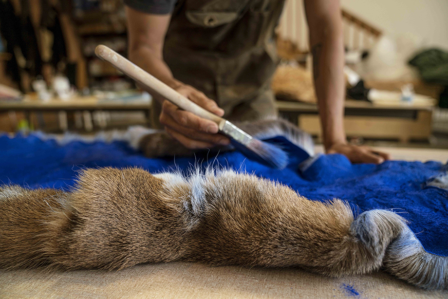 Indigenous artist paints over fur. Photography by Fernando Decillis for Smithsonian Magazine.