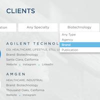 Expert Advice: Client Types: Brands