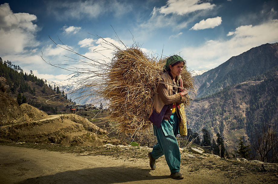 Mark Katzman's Real and Raw Travels through India for FES - Woman carrying hay.