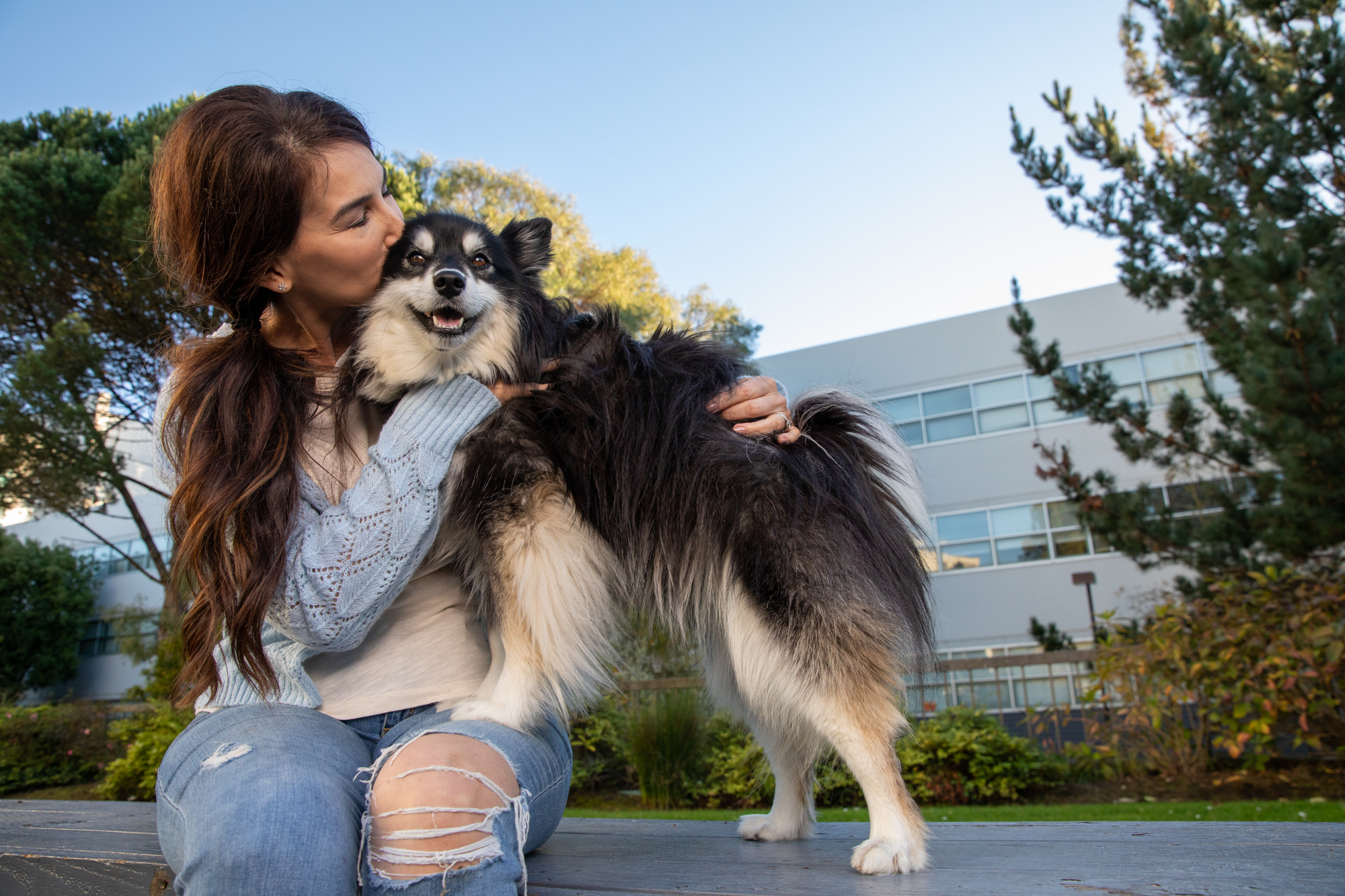 Mark Rogers photographs a shaggy dog getting a big kiss from its human for Healthy Paws Pet Insurance