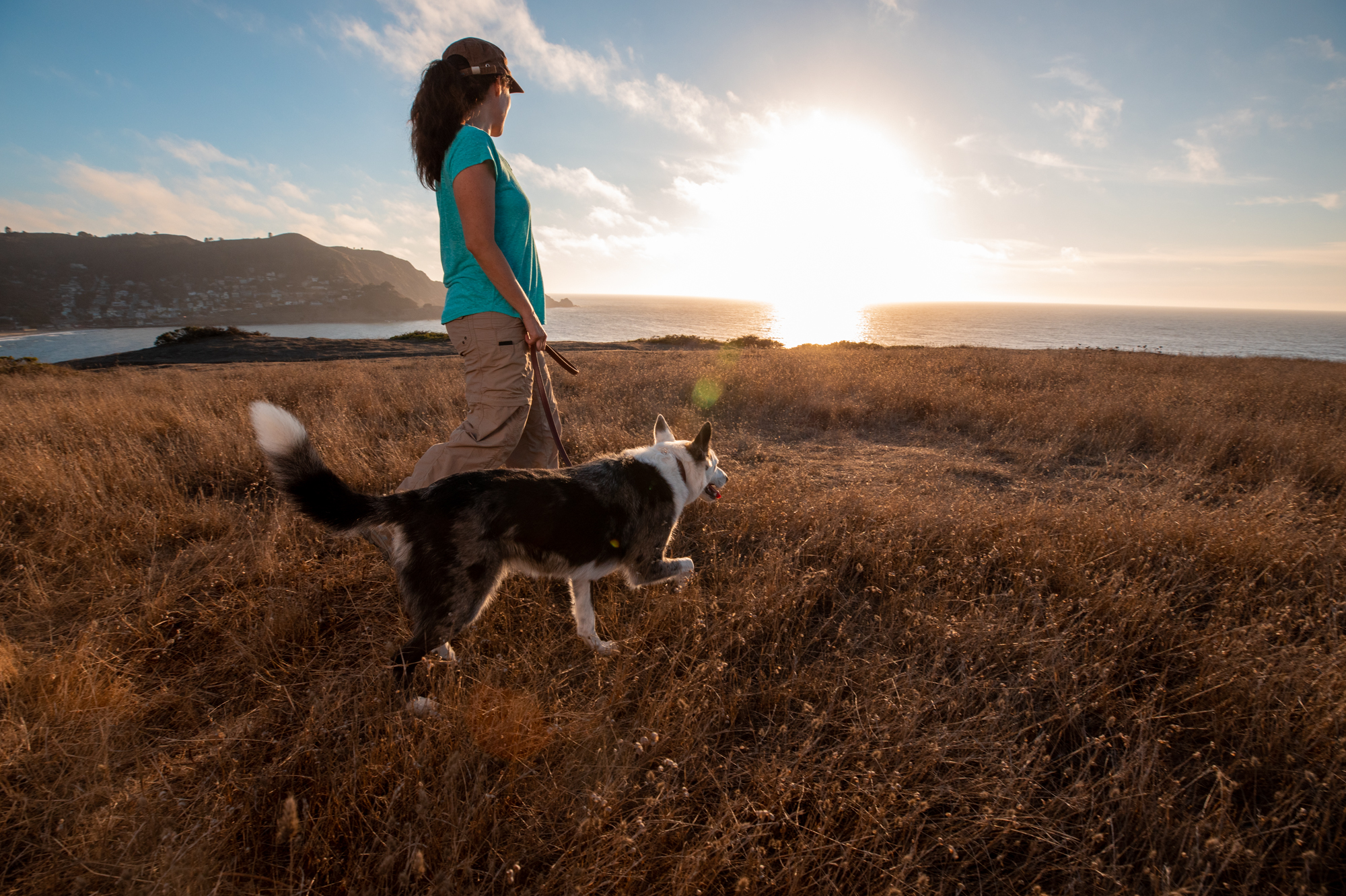 Pet photographer Mark Rogers photographs a dog on a walk with its human for Healthy Paws Pet Insurance
