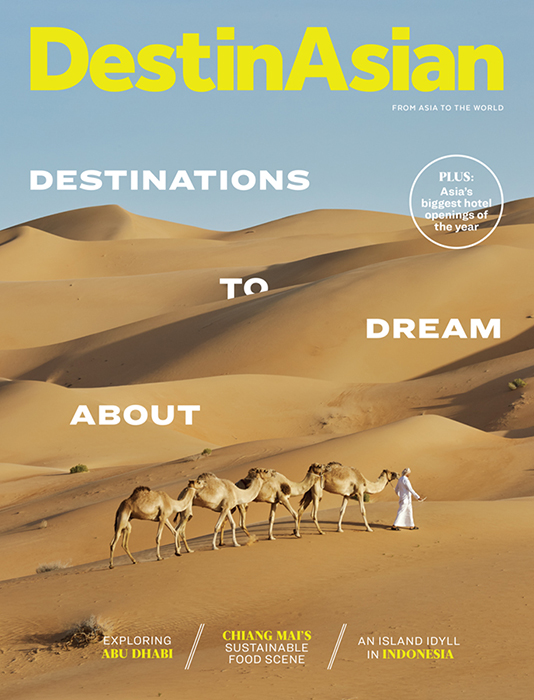 Martin Westlakes photograph of camel train in the desert on the cover of DestinAsian