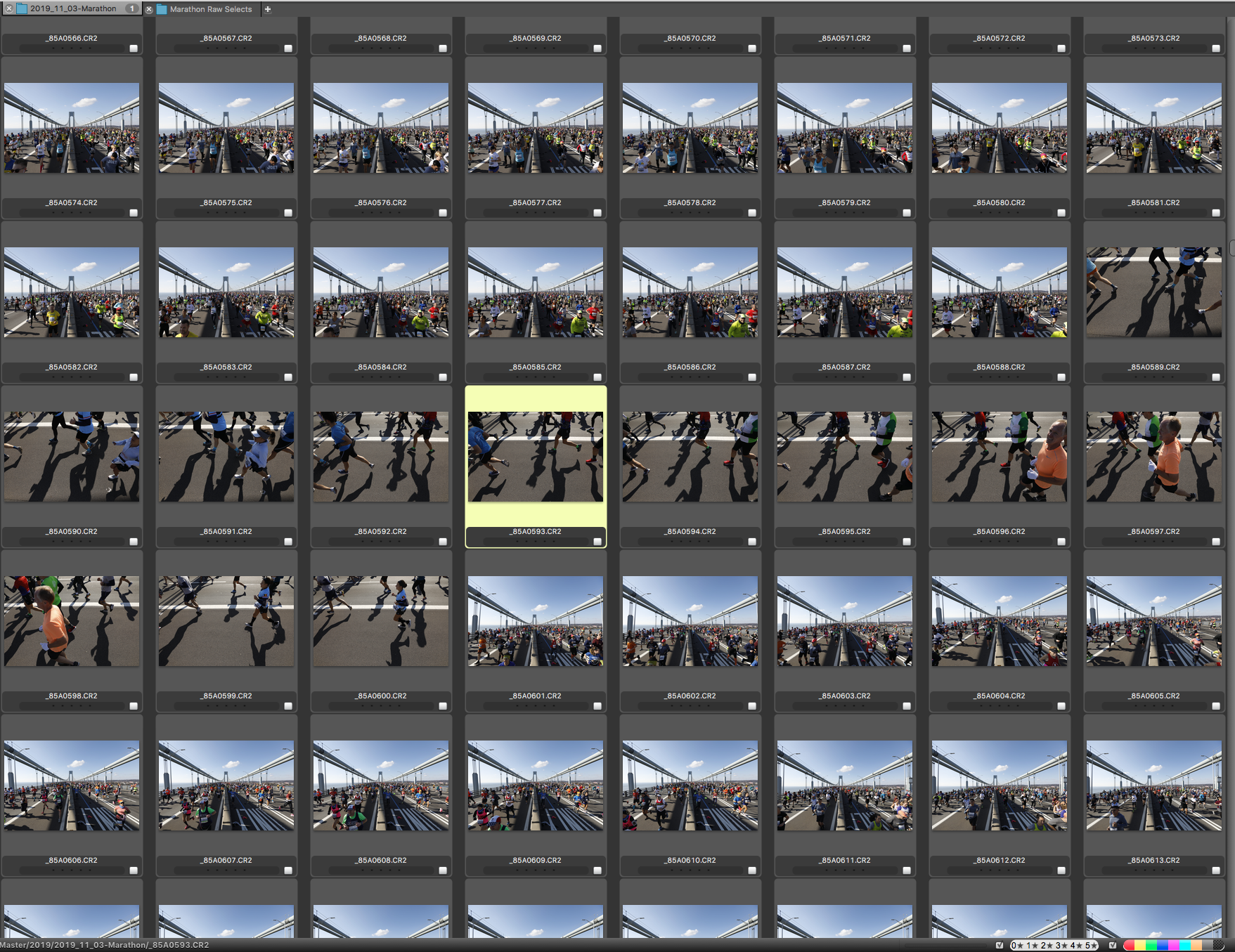 Ben Norman's full selection of photo thumbnails from the New York City marathon for the New York Times