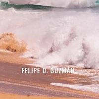 Web Assessment: Felipe Guzmán