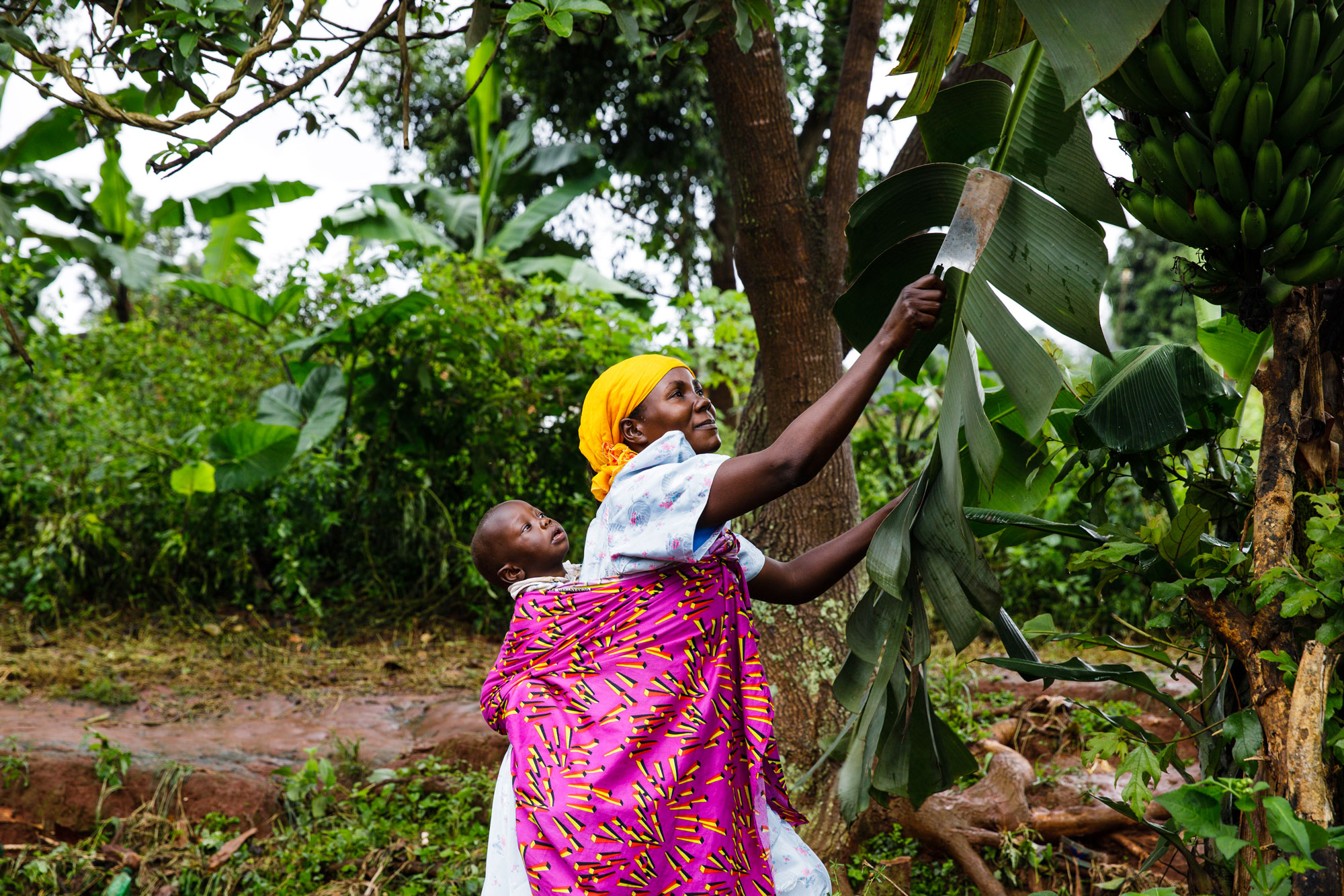Tina Boyadjieva for Lansinoh photographs a mother in Uganda with her child strapped to her back as she works