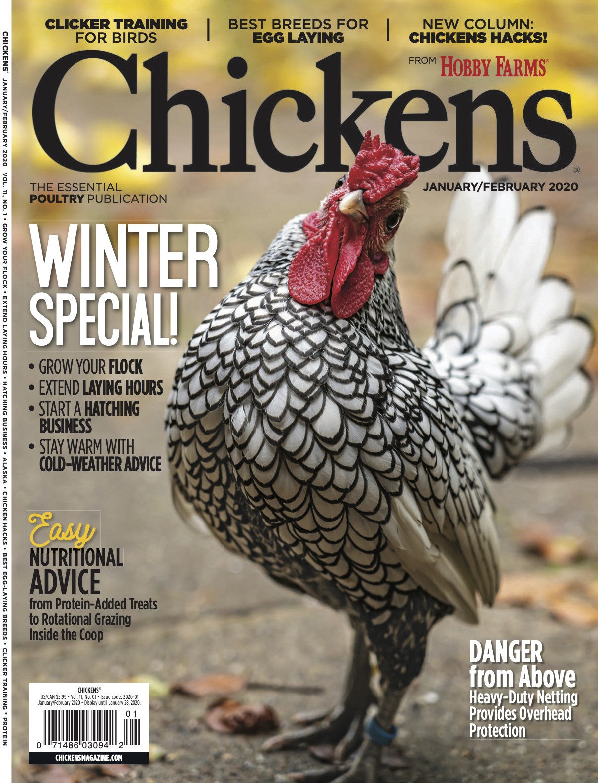 chickens magazine tear sheet cover image january 2020