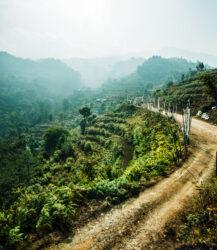 Michael Marquand Southern Bhutan 005