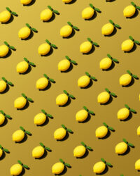 Vancouver Still Life Photographer Lemons Grid Contemporary Art