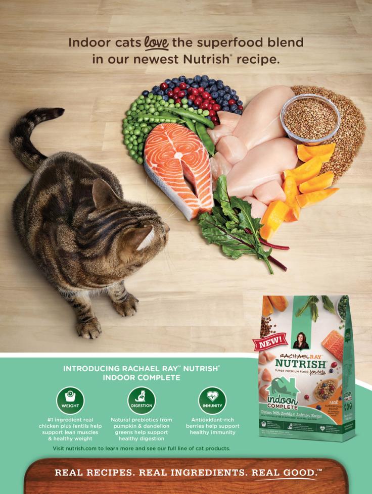 shaina fishman animal product shoot nutrish cat food by rachael ray