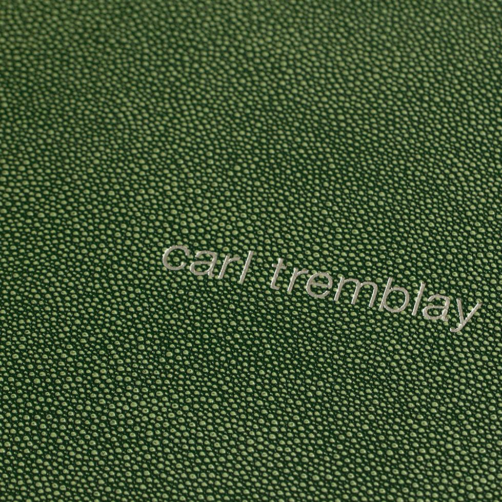 Web & Print Edit: New Portfolios for Carl Tremblay