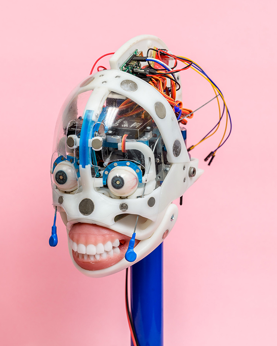 A robotic head at the Real Doll sex doll factory in San Marcos, California. by Alastair Philip Wiper