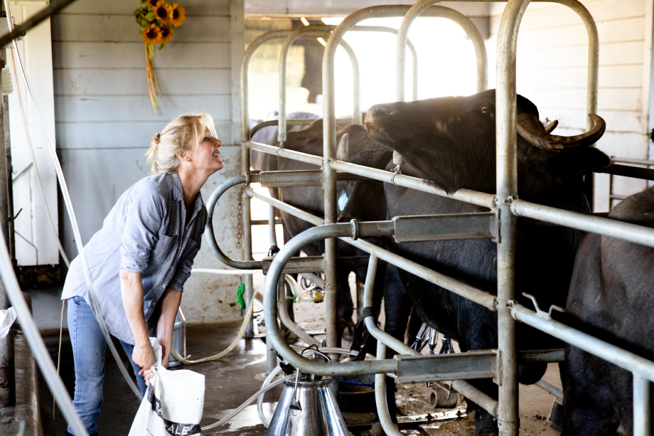 Farmer smiles at her cows while milking shot by Angela DeCenzo for National Geographic Traveller Food magazine