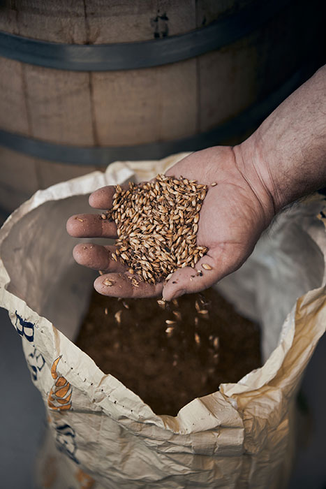 A brewer holds grains in his hands. Photographed by CJ Foeckler for Spike Brewing.