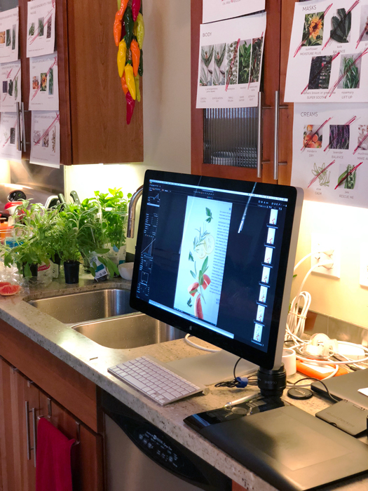 Behind the scenes of Chava Oropesa's studio shooting ingredients for Tuel Skincare