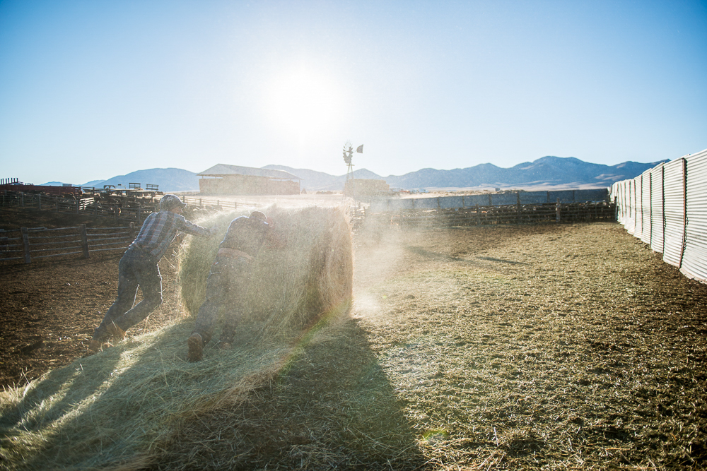 Photographer Frank Rogozienski Creative in Place: Life on the Ranch
