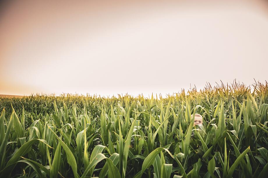 A kids looks through a corn field. Photography by Jason Elias