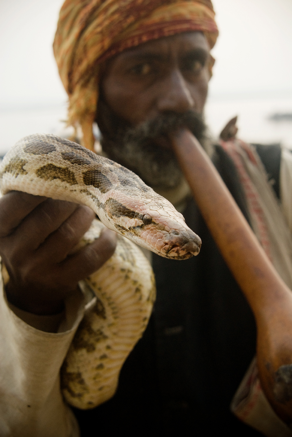 Man holding snake shot by Michael Marquand for Lodestars Anthology
