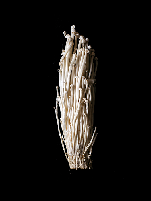 Enoki mushrooms photographed by Rebecca Peloquin, food photographer los angeles, hire food photographer los angeles, food photography los angeles, dark light food photography, chiarocsuro food photography, chiarocsuro, dark lighting, fruits photography, vegetables photography