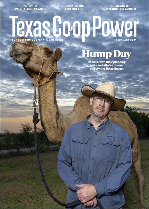 Cover for Texas Co-op Powers electric cooperative members featuring Doug Baum photography by Scott Van Osdol