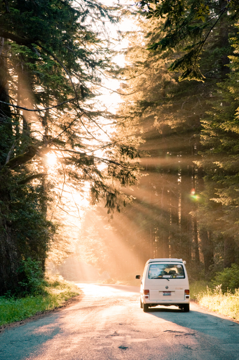 Creative in Place: Road Trip Photographer Tai Power Seeff