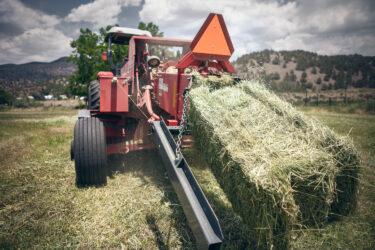 Doug Gritzmacher Denver Agriculture Photographer Portrait Making Hay 4