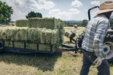 Doug Gritzmacher Denver Agriculture Photographer Portrait Making Hay 6