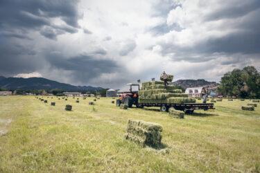 Doug Gritzmacher Denver Agriculture Photographer Portrait Making Hay 7