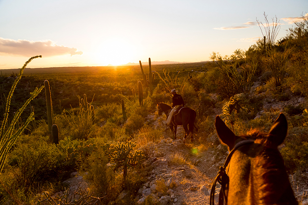Photographer Susan Seubert Creative in Place: Life on the Ranch