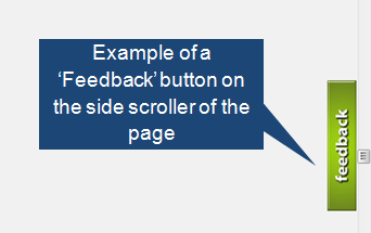 Sample Feedback Feature on Website