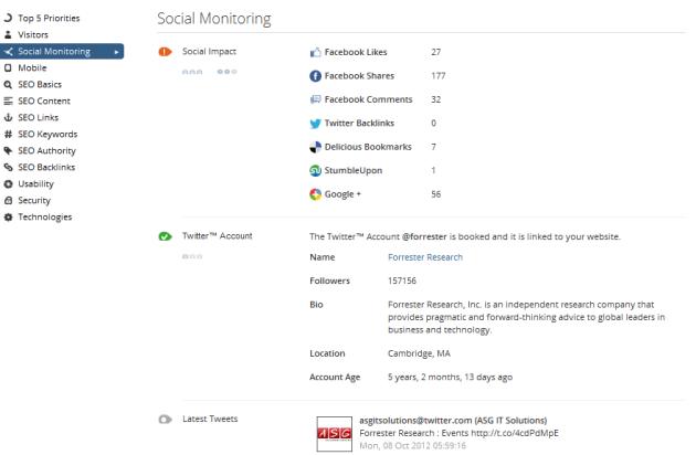 Social Monitoring - WooRank Website Review