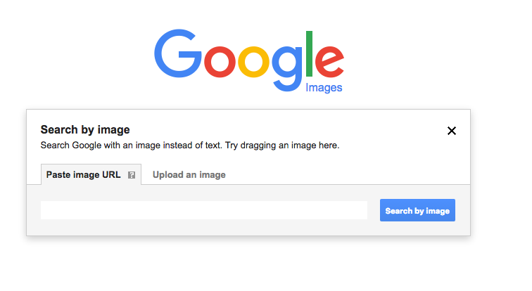 Google Image reverse image search