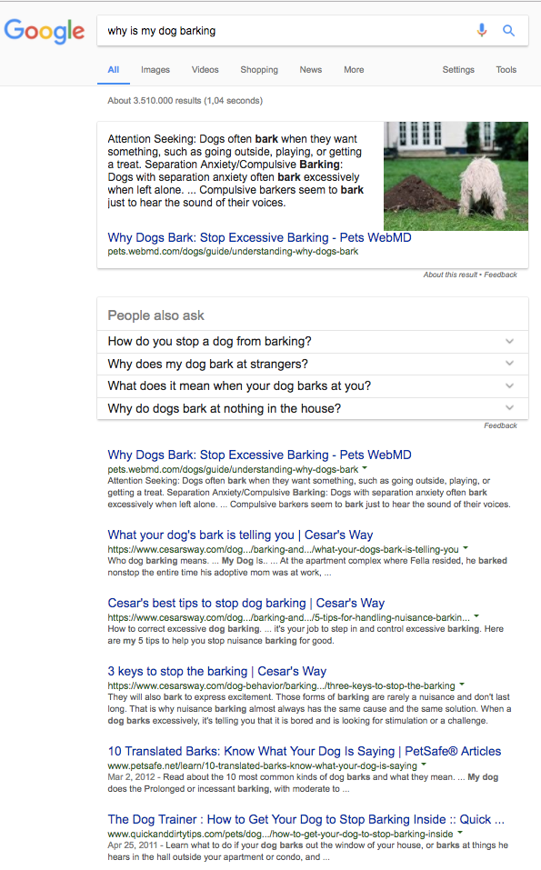 why is my dog barking semantic SERP