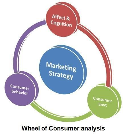 Wheel of Cosumer Analysis