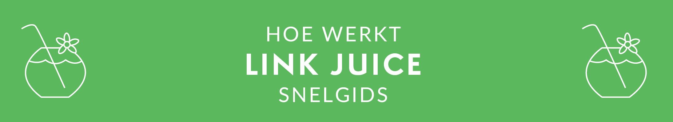 NL - SEO GUIDE - Link Juice