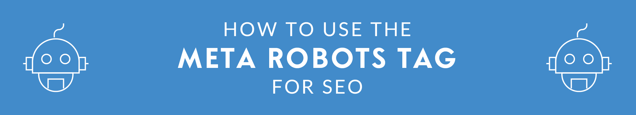 How to Use the Meta Robots Tag for SEO