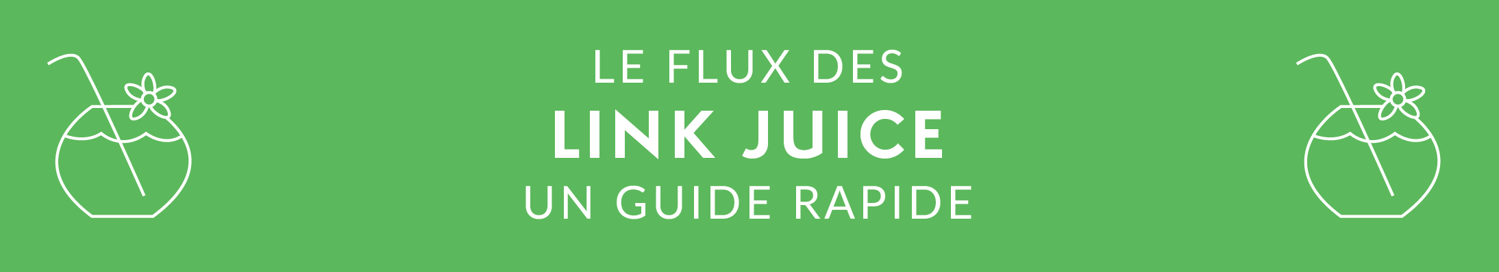 FR - SEO GUIDE - Link Juice