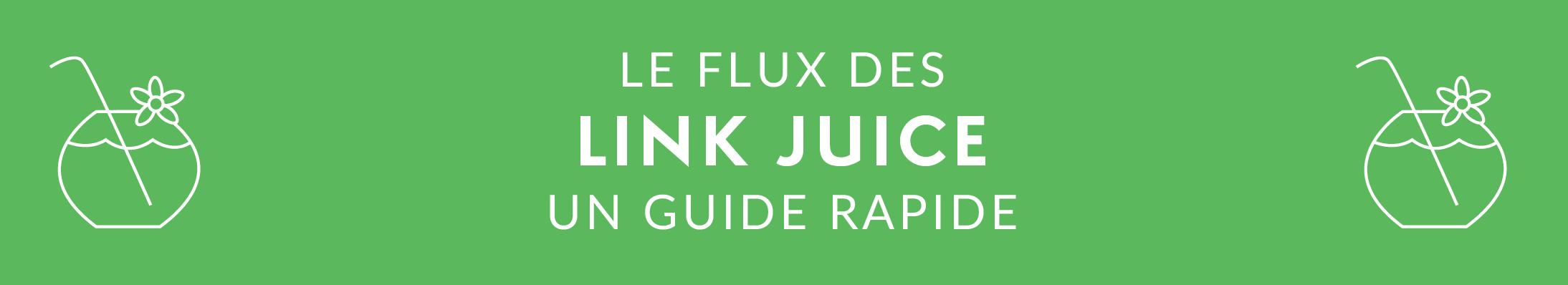 FR - SEO GUIDE - Link Juice