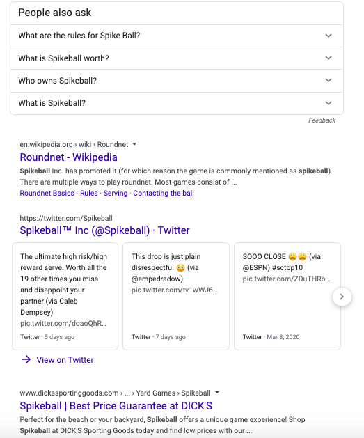 Middle section of Spikeball's Brand SERP