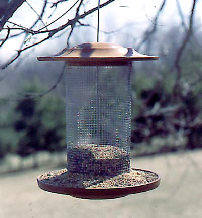 Birdy Bistro Woodworking Plan, Outdoor For Birds & Pets