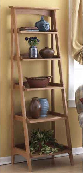 Shelves with a fresh slant Woodworking Plan, Furniture Bookcases & Shelving