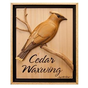 Cedar Waxwing Intarsia Pattern