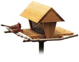 Snack Shop Bird Feeder Woodworking Plan, Outdoor For Birds & Pets