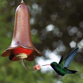 Flower-blossom hummingbird feeder