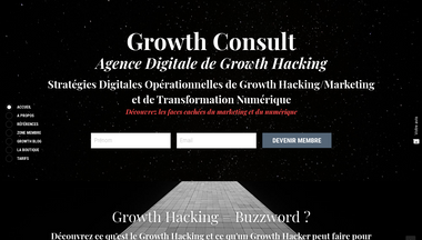 growthconsult.net Screenshot