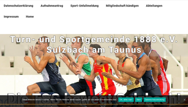 tsg-sulzbach.de Screenshot