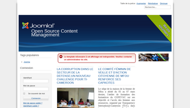 ti-cameroon.org Screenshot