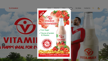 vitamilk.com.gh Screenshot
