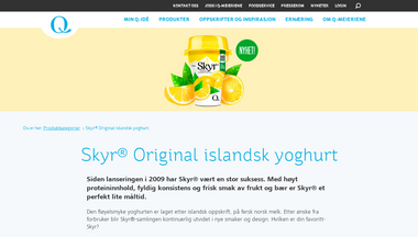 skyr.no Screenshot